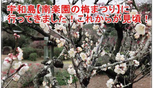 愛媛宇和島【南楽園】梅まつりに行ってきました!これからが見頃!!