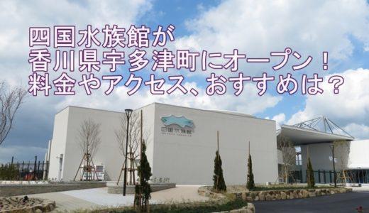 四国水族館が香川県宇多津町にオープン!料金やアクセス、おすすめは?