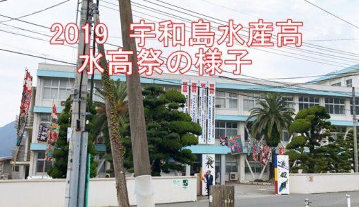 2019宇和島水産高 水高祭の様子を紹介!水産生物の展示など盛りだくさん