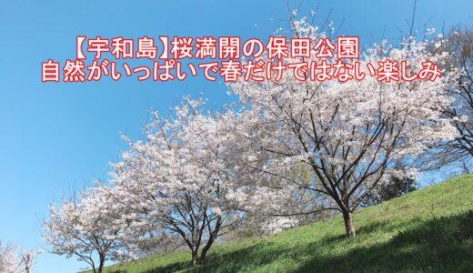 【宇和島】桜満開の保田公園/自然がいっぱいで春だけではない楽しみ